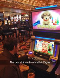 cute-puppy-slots-231x300